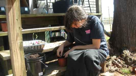 More Gardening - Repotting