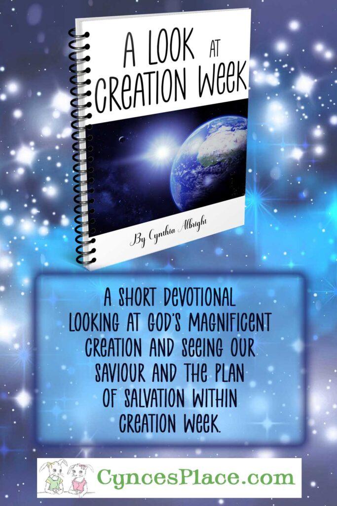 A Look At Creation Week