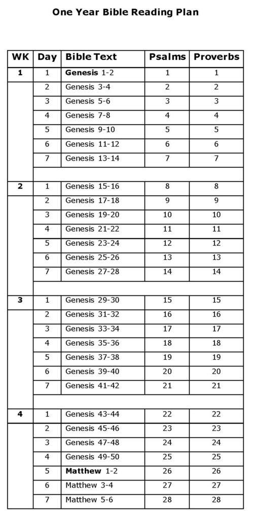 Bible One Year Reading Plan